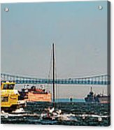 Busy Waters Acrylic Print