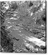 Butte Creek In Black And White Acrylic Print