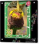 Butterflies 3d Acrylic Print