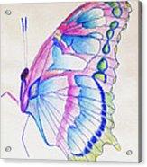 Butterflly Print Acrylic Print
