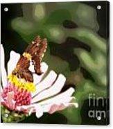 Butterfly Flower Acrylic Print