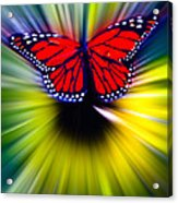 Butterfly Fly Acrylic Print