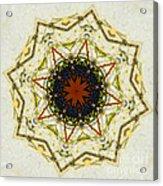 Butterfly Kaleidoscope Acrylic Print