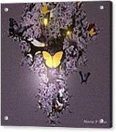 Butterfly Paradise Acrylic Print