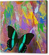 Butterfly Wall Acrylic Print