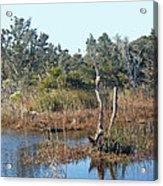 Buxton Salt Marsh - Outer Banks Nc Acrylic Print