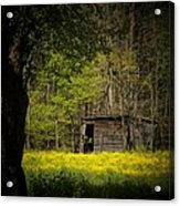 Cabin In The Flowers Acrylic Print