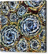 Cactus Blues Acrylic Print by Yvonne Scott
