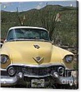 Caddy In The Desert Acrylic Print