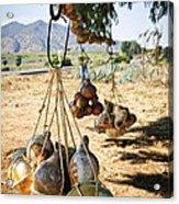 Calabash Gourd Bottles In Mexico Acrylic Print by Elena Elisseeva