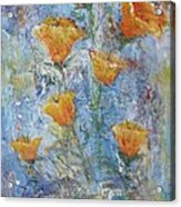 California Poppies Acrylic Print