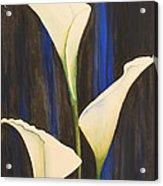 Callis From The Beach Acrylic Print