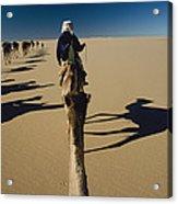 Camel Caravan And Their Shadows Acrylic Print by Carsten Peter