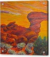 Camel Rock Acrylic Print