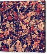 Camouflage 02 Acrylic Print by Aimelle