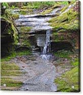 Camusfearna Gorge 1 Acrylic Print