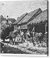 Canada: Farming, 1883 Acrylic Print