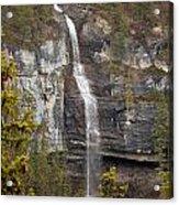 Canadian Water Fall 1908 Acrylic Print