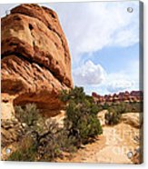 Canyonlands Needles Trail Acrylic Print