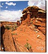 Canyonlands Textures Acrylic Print