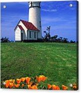 Cape Blanco Lighthouse Oregon Acrylic Print