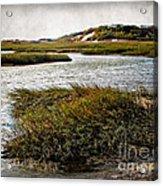 Cape Cod National Seashore Acrylic Print