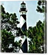 Cape Lookout Acrylic Print