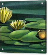 Card Of Frog With Lily Pad Flowers Acrylic Print