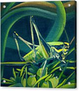 Card Of Mister Grasshopper Acrylic Print