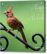 Cardinal Holiday Card Acrylic Print