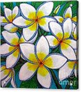 Caribbean Gems Acrylic Print