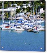 Caribbean Sails Acrylic Print