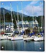Carlingford Marina, Carlingford, County Acrylic Print