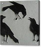 Carl's Crows Acrylic Print
