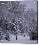 Carolina Snowfall Acrylic Print