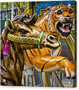Carousal Camel And Tiger On A Merry-go-round Acrylic Print