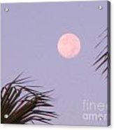 Carribean Full Moon Acrylic Print