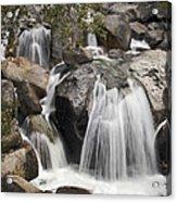 Cascade Creek Cascade Acrylic Print