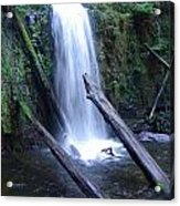 Rainforest Waterfall Cascades Acrylic Print