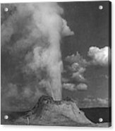 Castle Geyser Yellowstone Acrylic Print