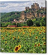 Castle In Dordogne Region France Acrylic Print