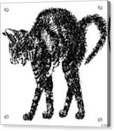 Cat-artwork-prints-2 Acrylic Print