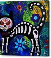 Cat Day Of The Dead Acrylic Print