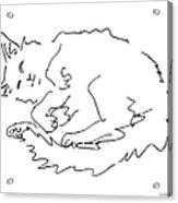 Cat-drawings-black-white-1 Acrylic Print