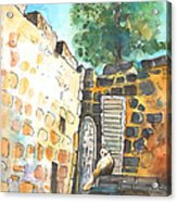 Cat In Nicosia Acrylic Print