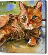 Cat King Acrylic Print
