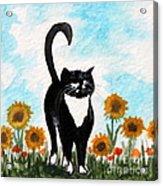 Cat Walk Through The Sunflowers Acrylic Print