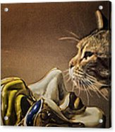 Cat With Venetian Mask Acrylic Print