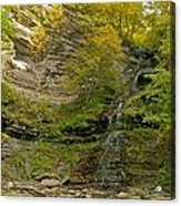Cathedral Falls West Virginia Acrylic Print