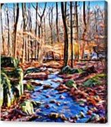 Catoctin Woods Acrylic Print